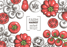 Tomatoes Hand Drawn Illustrati...