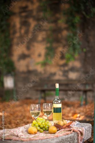 Two glasses of white wine and a bottle. Grapes and other frkty on the table. Fall leaves and a romantic dinner in the garden. Free space for text. Copy space.