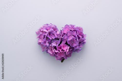 Poster de jardin Hortensia Heart shape made of purple flowers on lilac background. Gradient ultra violet colors palette. Love symbol. Top view