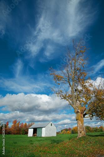 Foto op Canvas Centraal-Amerika Landen LIttle barn in a green field