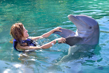 Young Girl Playing With Dolphin In Xel-ha Park, Rivera Maya, Mexico