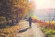A Man Walks Along A Path In A Park Near A Lake In The Early Morning In The Autumn