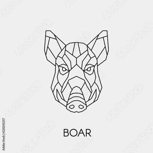 Geometric boar Fototapete