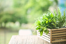 Wooden Crate With Fresh Aromatic Herbs Outdoors