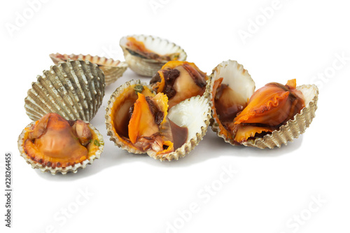 fresh cockles seafood isolate on white background