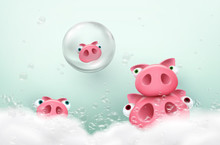 Pigs Take Bath With Soap Bubbl...