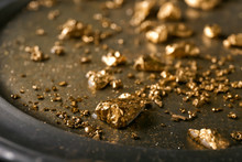 Gold Nuggets On Metal Plate, C...