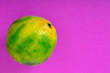 Leinwanddruck Bild - Green sweet tangerine isolated on lilac background