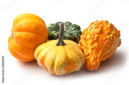 Fotomural closeup of colorful gourds for halloween decoration on white background