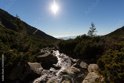 Foto op Canvas Zwart Flowing mountain river in High Tatras landscape