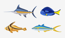Fish Characters. Cartoon Vecto...