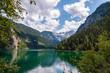 Wald, Gosausee und Dachsteingletscher