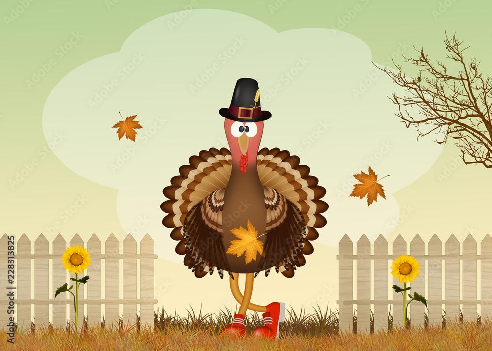 illustration of turkey in autumn