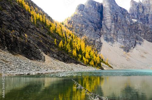 Poster Reflexion 秋のカナディアンロッキー レイク・ルイーズ近くの黄葉のレイク・アグネス(バンフ国立公園 カナダ・アルバータ州)