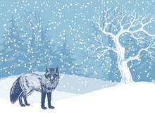 Hand Drawn Fox On Winter Backg...