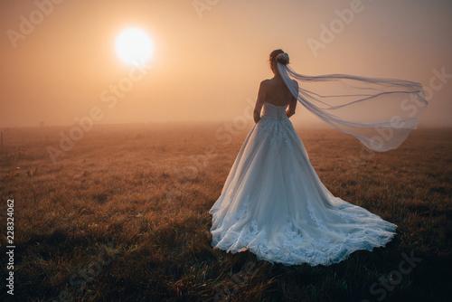 Fotomural  Bride, warm sunrise, misty autumn morning