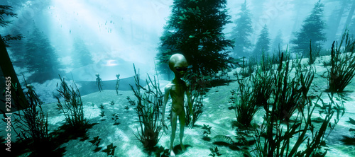 Wall Murals UFO Extremely detailed and realistic high resolution 3d illustration of a Grey Alien standing in a forest