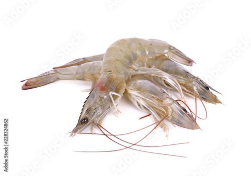 whole fresh vannamei shrimps on white background