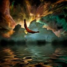 Eagle Flies In Vivid Colorful ...