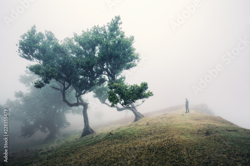 Man on top of a hill by a tree
