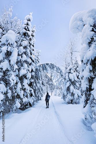 Man walks along snow covered path