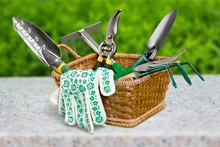Group Of Gardening Tools On Background