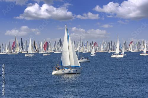Fotografie, Tablou Regatta Barcolana in the Gulf of Trieste, Italy