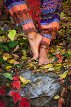 Barefoot  Woman Legs In Yoga Tree Pose In Colorful Autumn Leaves Outdoor