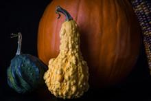 Yellow Gourd Against An Orange Pumpkin