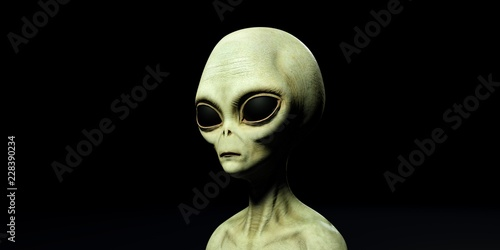 Vászonkép Extremely detailed and realistic high resolution 3d illustration of a grey alien