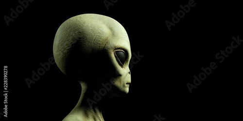 Obraz na plátně  Extremely detailed and realistic high resolution 3d illustration of a grey alien