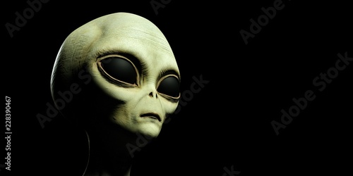 Pinturas sobre lienzo  Extremely detailed and realistic high resolution 3d illustration of a grey alien