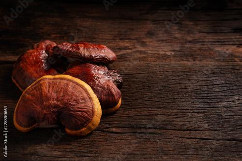 Fotografia  Fresh Lingzhi mushroom on dark wooden floor