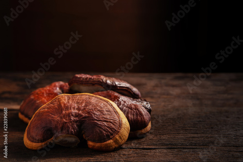 Photo  Fresh Lingzhi mushroom on dark wooden floor