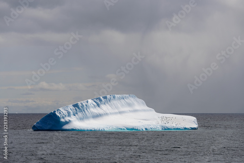 Fotobehang Antarctica Antarctic seascape with iceberg