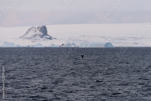 In de dag Antarctica Antarctic landscape with glacier and mountains