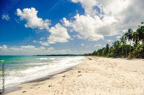 Fotobehang Zuid-Amerika land view on remote beach by Tayrona national park