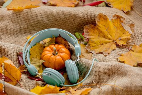 fototapeta na szkło pumpkin and leaves with headphones on rumpled sackcloth
