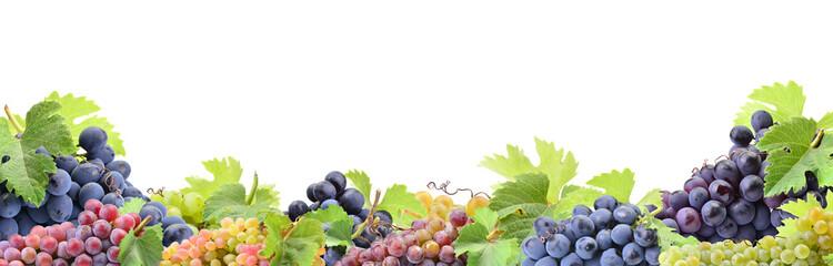 Fototapeta Owoce Grapes on a white background