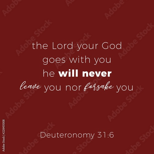 Biblical phrase from deuteronomy 31:6, the lord your god goes with you Wallpaper Mural