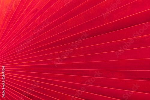 Fotografie, Obraz  éventail géant en bois rouge