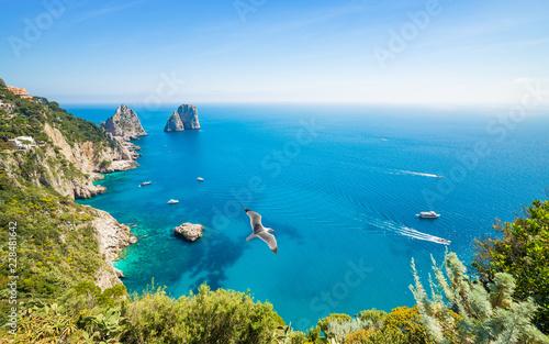 Foto op Canvas Europa Daytime aerial view of famous Faraglioni rocks near Capri island, Italy
