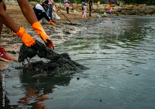 Fotografija  Volunteers wear orange rubber gloves to collect garbage on the beach