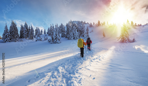 Spoed Foto op Canvas Wintersporten Winter hiking. Tourists are hiking in the snow-covered mountains.