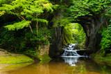 Fototapeta Fototapeta las, drzewa - 濃溝の滝