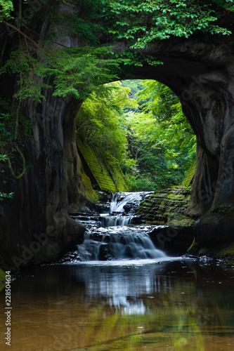 Poster Rivière de la forêt 濃溝の滝