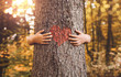 Leinwandbild Motiv Nature lover, close up of child hands hugging tree with copy space