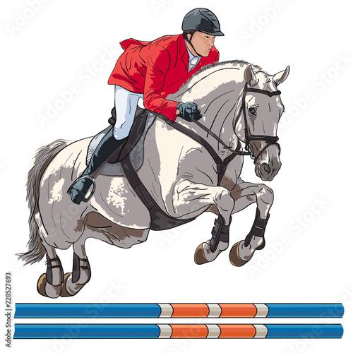 Fotografía  Equestrian, show jumping