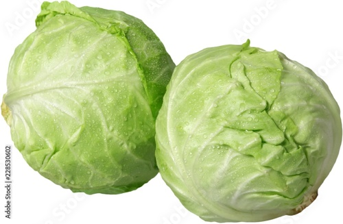 Cabbage - isolated image
