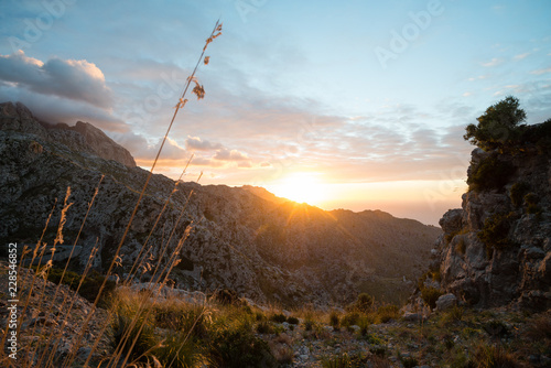 Garden Poster Hill Beautiful sunset at Serra de Tramuntana mountains, Mallorca, Spain